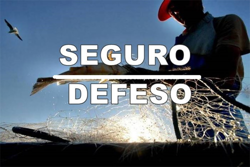Como consultar seguro defeso de pescador artesanal